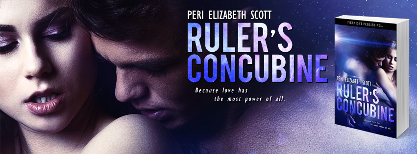Rulers-Concubine-evernightpublishing-2016-banner2.jpg