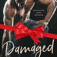 #99cents Christmas Sale: Damaged by Michelle Horst @MichelleAHorst #DarkRomance #ebook
