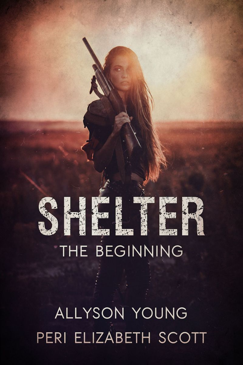 Shelter_TheBeginning_LRG