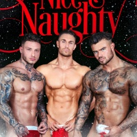 Nice & Naughty: 4 sizzling holiday treats | @MadisonFayeSmut #SteamyRomance
