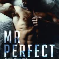 #BookRelease Mr Perfect by Aimee Nicole Walker #MMSuspense