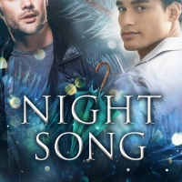Can serendipity bring them together? NIGHT SONG @parr_books #mmromance